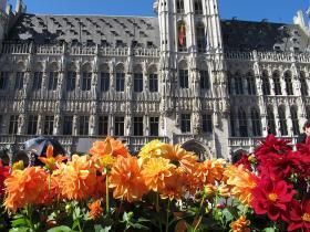 Brusel_2015_0063